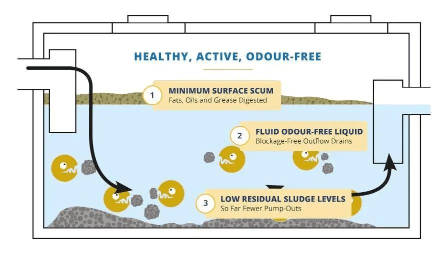 healthy-septic-tank-diagram